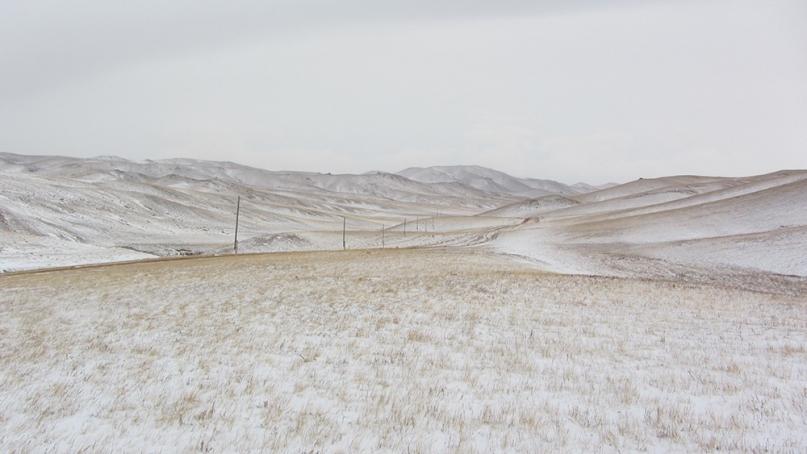 Mongolian Desert plain