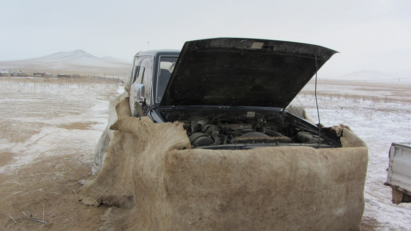 Jeep sheep skin
