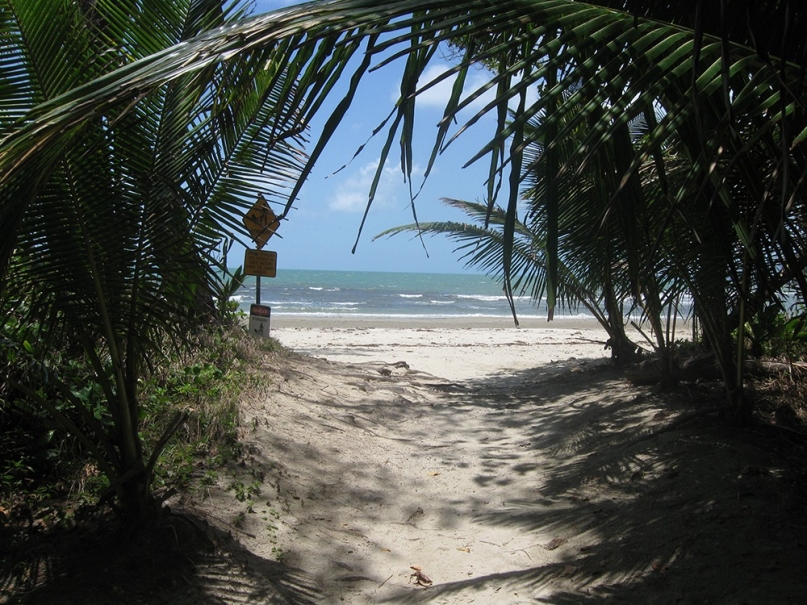 Cape Tribulation beach house