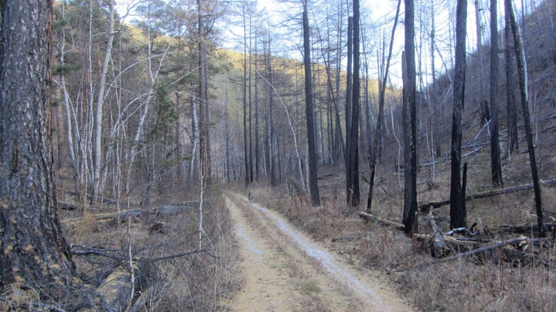 Lake baikal hike road