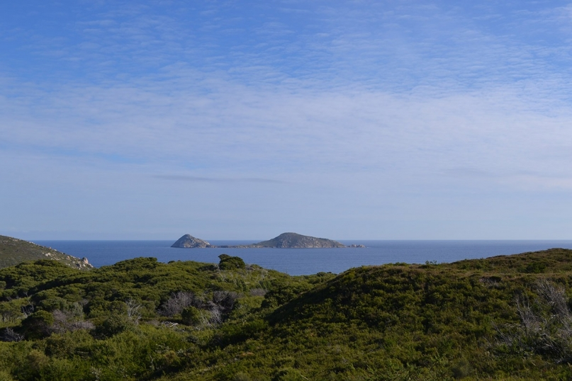 wilsons promontory national park view