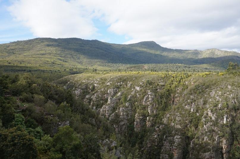 Stormsrivier mouth landscape