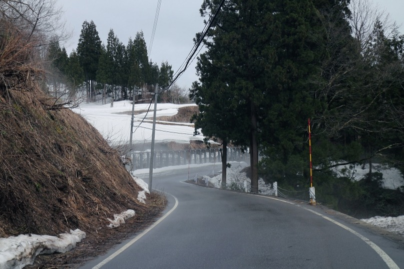 Tokamachi road winter