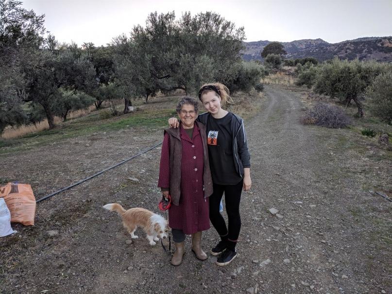 Volunteering on an olive farm in Greece